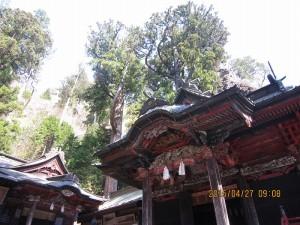 妙義神社、貫前神社、榛名神社、諏大社27.4.26 (85)