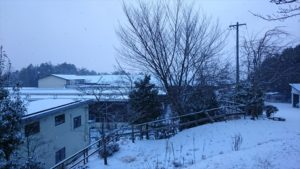 (14日朝の本社です。スキー場は大喜びでしょうが……)